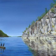 Cormorants in Desolation Sound