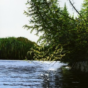 Leaning Cedars