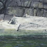 Merganser Rock