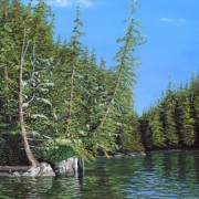 Bright Cedars