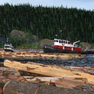 Menzies Bay Log Booms