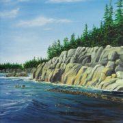 Rock Trees Kelp Water