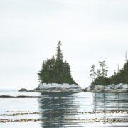 Central Coast Reflection
