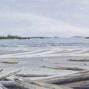 Calvert Beach with Gulls